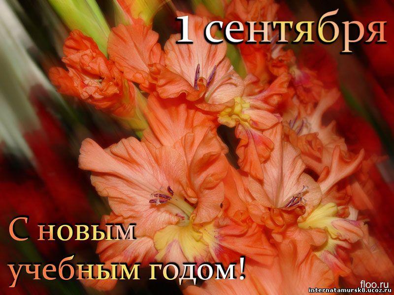 Смотреть бесплатно русское первый лезбийский опыт 15 фотография